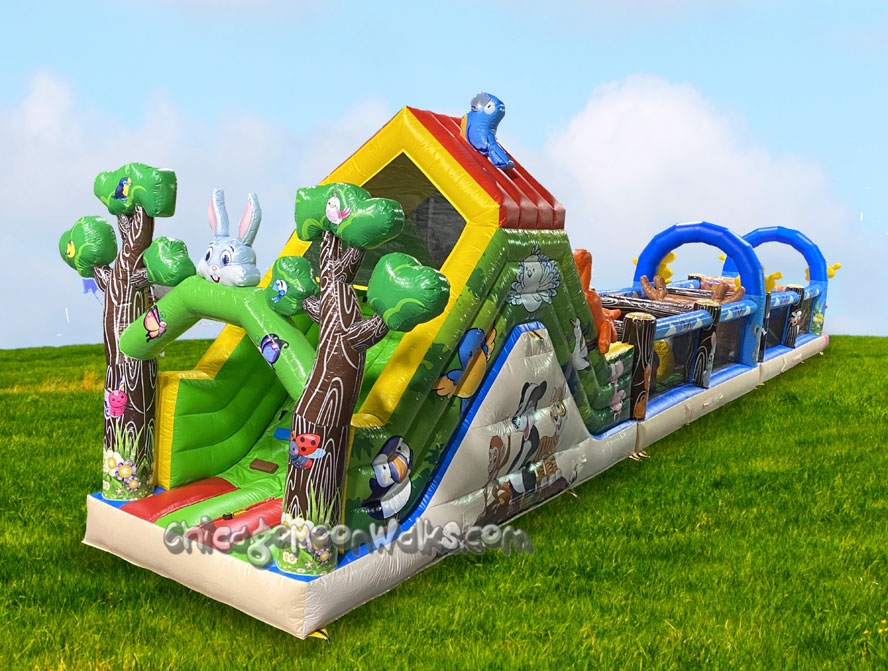 Forest Adventure Toddler Obstacle Course Rental Chicago Illinois