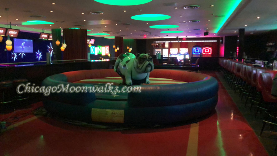 Mechanical Bull Dog Rental Chicago