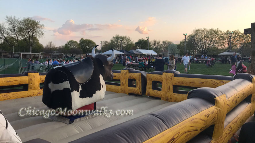Mechanical Bull Rental Chicago