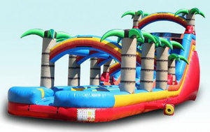 Palm Paradise Dual Waterslide with Pool and Slip n Slide