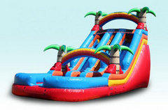 Palm Paradise Dual Lane Waterslide 22 ft