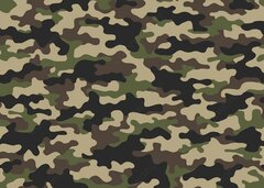 Camouflage Military Party Theme