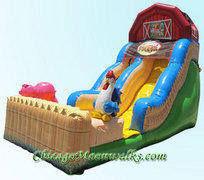Funny Farm Waterslide 18 ft