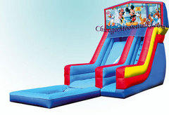 Mickey Mouse Waterslide with Pool