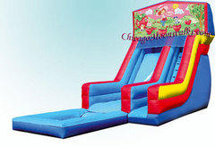 Strawberry Shortcake Waterslide with Pool