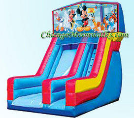 Mickey Mouse Slide