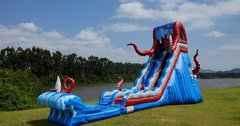 THE KRAKEN Water Slide