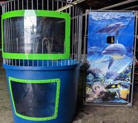Trailer Mounted Dunk Tank