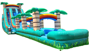 Giant Tropical Slide w/ Slip n Slide