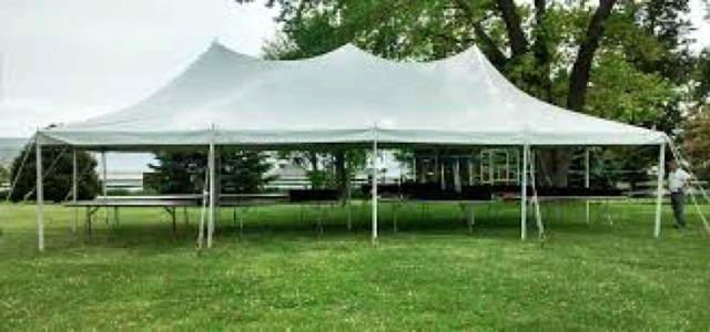 20ft X 40ft 800 sq ft pole tent grass only