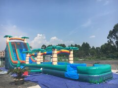 "24' Tropical Waterslide Dual Lane Racing Slide ""The Weekender"""