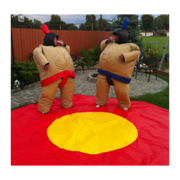 Sumo wrestling two suits with mat
