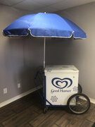 Ice cream cart electric  (Ice Cream Not Included)