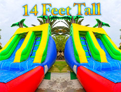14ft Palm Tree Water Slide