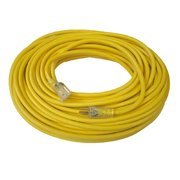 50ft. Extension Cord