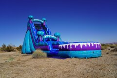 22ft Electric Jellyfish Waterslide