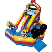 Mickey Park Junior Dry Slide