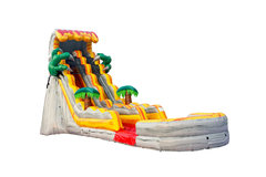 19ft Dinosaur Single Lane Water Slide with Pool