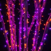 Purple/Orange LED String Lights 5 pieces