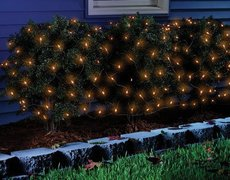 Halloween Lighting - Bushes