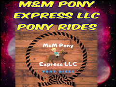 M andM Pony Express LLC Pony Rides