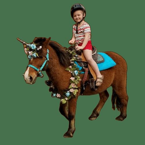 Pony & Unicorn Rides