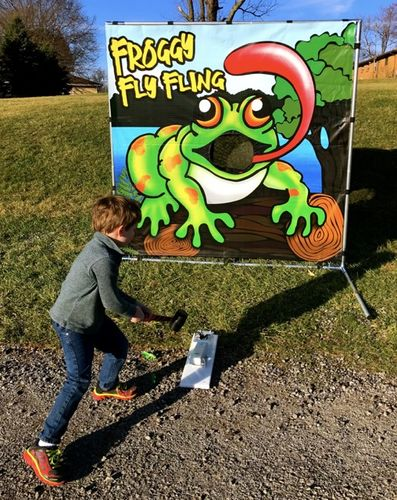Flying Froggy Carnival Game