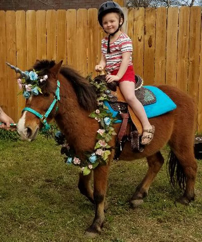 picture of unicorn pony rides Aledo, tx