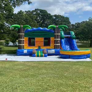 Arlington Bounce House with Slide Rentals