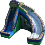 Dinosaur Escape Slide and Rock Climbing Rental