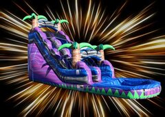 18' Purple Crush Waterslide With pool