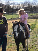 Lead In Pony Rides