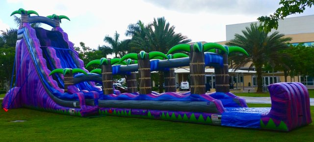 Purple Tropical Paradise Waterslide