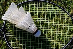 Badminton Volleyball Net Rental Denver Colorado