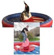 Half mechanical bull/robo surfer package - 15x15