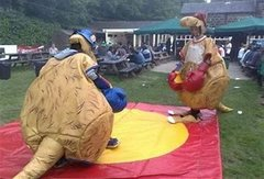 Kangaroo Suit Boxing