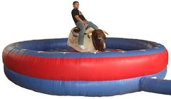Mechanical Bull - 15x15