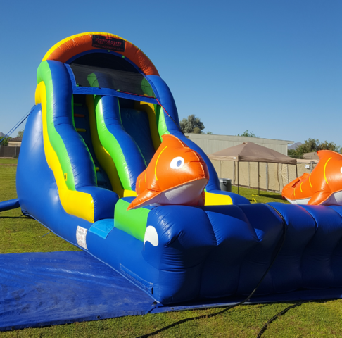 18 ft rajun cajun water slide