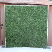 Boxwood Hedge Backdrop