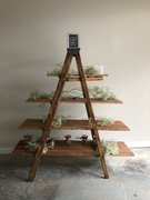 Vintage Wood Double Ladder