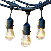 Edison String Lights (Black)