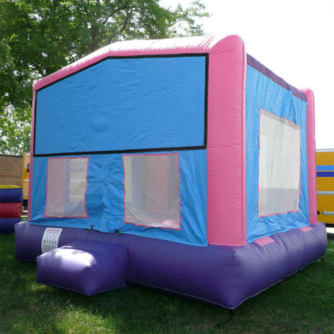 Pink & Purple Playhouse 15 x 15