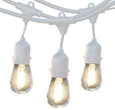 Edison String Lights (White)