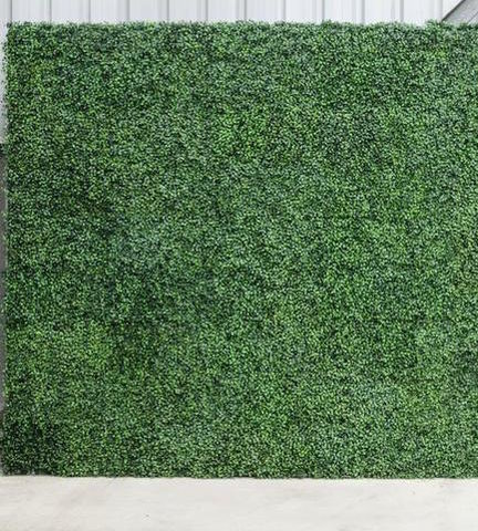 8ftx8ft Hedge wall Backdrop