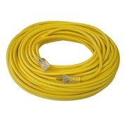 100ft Extension Cord