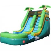 Palm Tree Water Slide Inflated Bottom