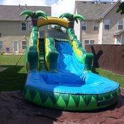 Palm Tree Water Slide With Pool