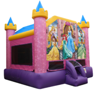 Disney Princess Palace 15X15