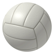 Volley Ball Rental