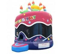 Birthday Cake Bouncer 15x15